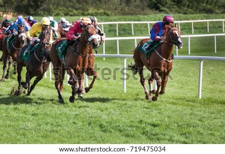 Racehorses and jockeys galloping towards the finish line #719475034