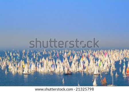 Racing sails boats in the middle of the sea