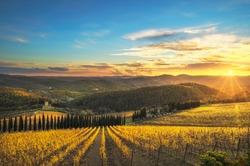Radda in Chianti vineyard and panorama at sunset in autumn. Tuscany, Italy Europe.