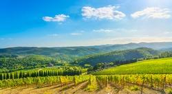 Radda in Chianti vineyard and panorama in autumn. Tuscany, Italy, Europe.