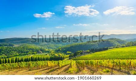 Radda in Chianti vineyard and panorama in autumn. Tuscany, Italy, Europe. Photo stock ©