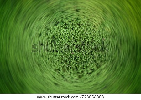 Radial motion moss texture #723056803
