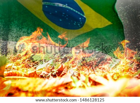 Raging tropical forest fire and the flag of Brazil - digital composite. Suitable for ilustrate the big and large large fires like the one in the Amazon