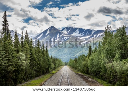 Railroad in the alaskan wilderness