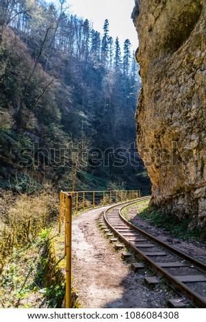 Railroad tracks cut through autumn woods #1086084308