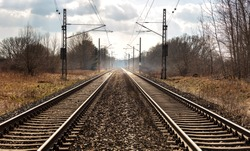 railroad tracks in the wild