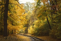Railroad tracks through autumn forest with colorful trees
