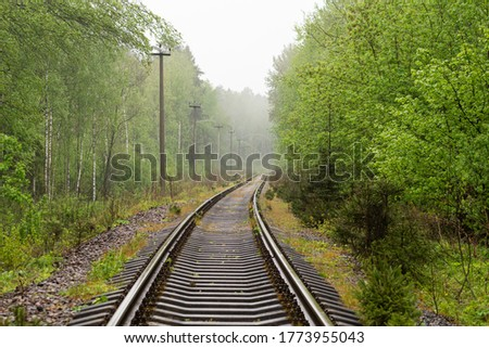 Railroad tracks through the forest in spring. Frog weather.