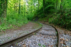 rails for an old, idle loren train in the forest
