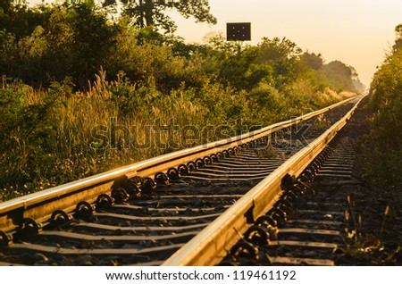 railway and sunrise green landscape nature