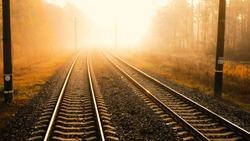Railway in autumn blurred forest at dawn
