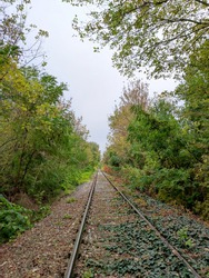 Railway in fall with colorfull nature.