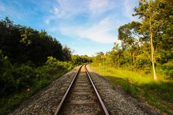 Railway in jungle area