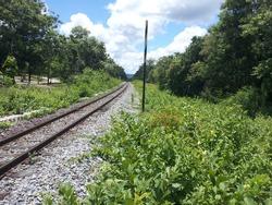 Railway tracks and nature along the way at Lampang, Thailand.