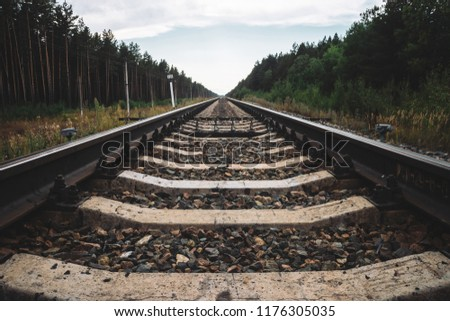 Railway traveling in perspective across forest. Journey on rail track. Poles with wires along rails. Atmospheric landscape with railroad along bushes and trees with copy space.