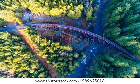 Railway Trestle in Vancouver Island - Aerial  view of  historic Kinsol Trestle in Vancouver Island 1, BC Canada. Stockfoto ©