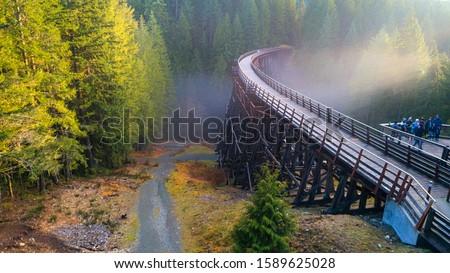 Railway Trestle in Vancouver Island - Beautiful afternoon scene of historic  Kinsol Trestle in winter time 3, Vancouver Island, BC Canada. . Stockfoto ©
