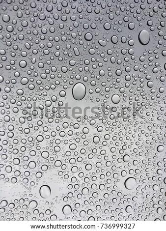 RAIN #736999327