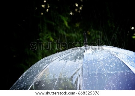 rain and umbrella with the rain drops #668325376