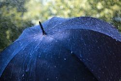 Rain drops falling on an umbrella
