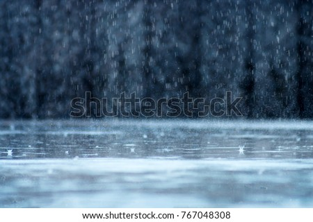 Rain fall on the ground in rains season.