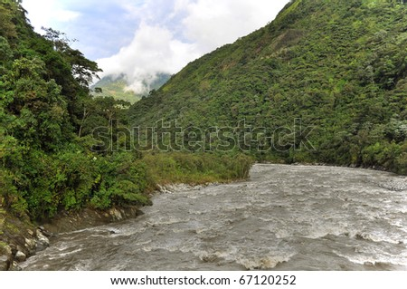 rain forest in the andes , Ecuador
