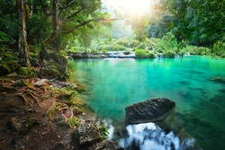 Rain forest National Park in Guatemala Semuc Champey at sunset