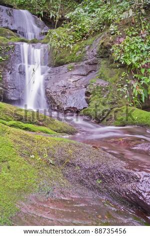 Rain forest waterfalls, Thailand.