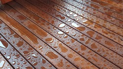 Rain on Freshly oiled Spotted Gum decking 3 days after oiling