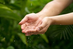 Rain water drop to cupped hand with green nature background metaphor abundance of freshwater and nature. Ecosystem and sustainable lifestyle.