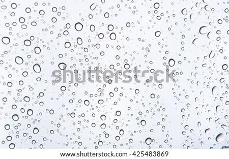 Rain water drops #425483869