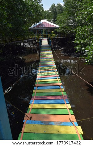 rainbow bridge in the middle forest