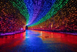 Rainbow colored christmas lights reflect their color on wet ground after recent rain.
