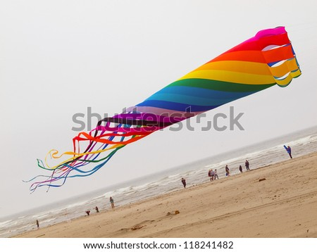Rainbow Colored Tube Kite Flying on an Overcast Day at the Beach