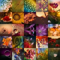 rainbow colors mosaic