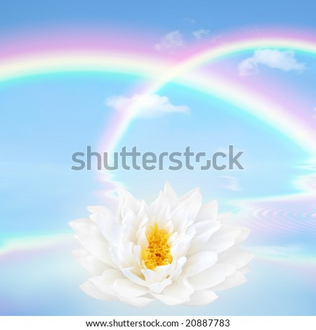 Rainbow fantasy abstract in a blue sky with a white lotus lily flower and reflection over rippled water.
