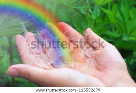Rainbow in female hands