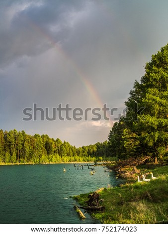 Stock Photo Rainbow over a lake surrounded by forest. A family of geese goes out to the water and a bright ray of sunshine shines on them.