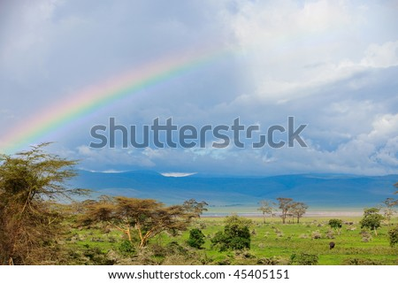 Rainbow over beautiful Ngorongoro crater area in Tanzania. Elephants can be seen on right down corner.