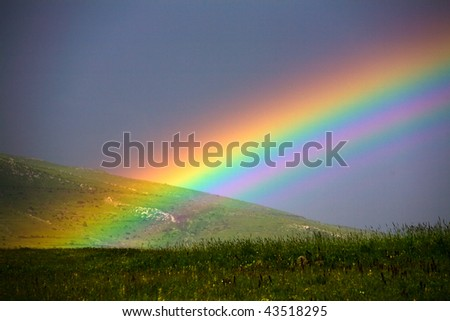 rainbow over grass filed
