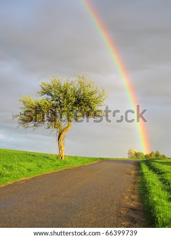 Rainbow's end. Beautiful view on rainy and sunny landscape.