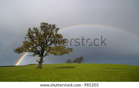 Rainbow scene on a country landscape