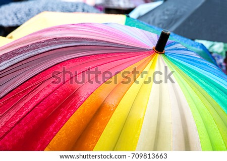rainbow umbrella stand out from the crowd of many umbrellas in the rain #709813663