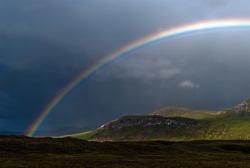 rainbow with dark sky over a meadow