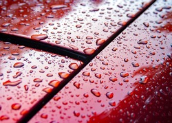 Raindrops on Red Car Hood