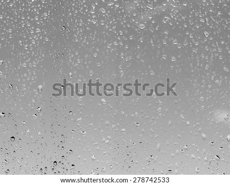 raindrops on the glass #278742533