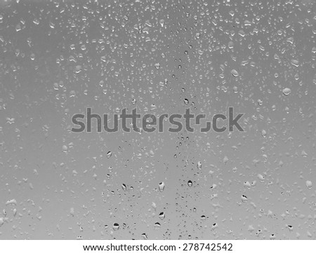 raindrops on the glass #278742542
