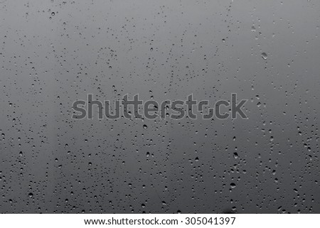 raindrops on the glass #305041397