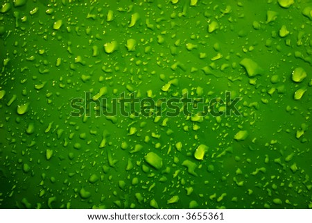 Raindrops on the green