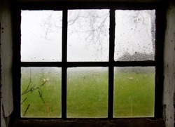 Raindrops on window. View through a stable window with bars on a meadow with sheep
